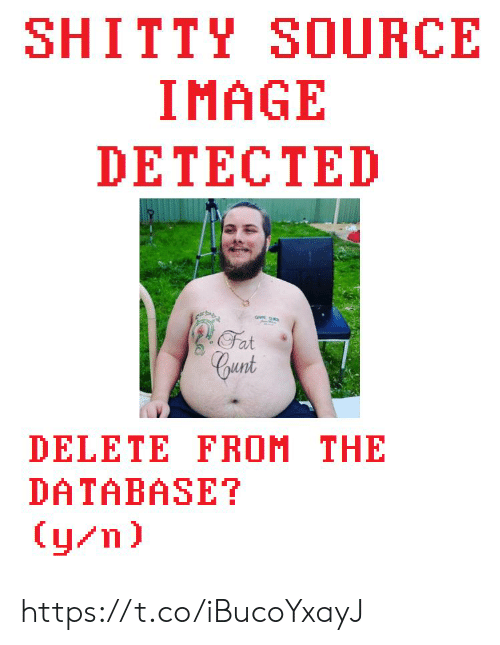 Y N: SHITTY SOURCE  IMAGE  DETECTED  Fat  Cunt  DELETE FROM THE  DATABASE?  (y/n) https://t.co/iBucoYxayJ