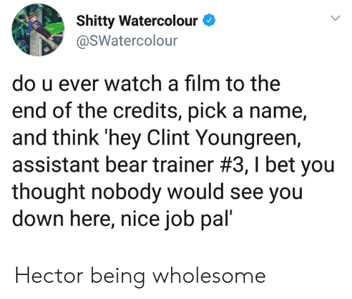 trainer: Shitty Watercolour  @SWatercolour  do u ever watch a film to the  end of the credits, pick a name,  and think 'hey Clint Youngreen,  assistant bear trainer #3 , I bet you  thought nobody would see you  down here, nice job pal' Hector being wholesome