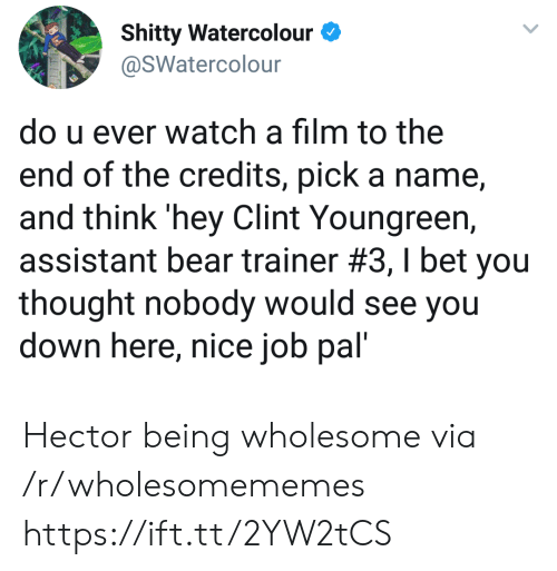 Clint: Shitty Watercolour  @SWatercolour  do u ever watch a film to the  end of the credits, pick a name  and think 'hey Clint Youngreen,  assistant bear trainer #3 , I bet you  thought nobody would see you  down here, nice job pal' Hector being wholesome via /r/wholesomememes https://ift.tt/2YW2tCS