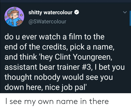 Clint: shitty watercolour  @sWatercolour  do u ever watch a film to the  end of the credits, pick a name,  and think 'hey Clint Youngreen,  assistant bear trainer #3, I bet you  thought nobody would see you  down here, nice job pal' I see my own name in there