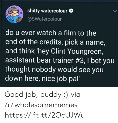 trainer: shitty watercolour  @SWatercolour  do u ever watch a film to the  end of the credits, pick a name,  and think 'hey Clint Youngreen,  assistant bear trainer #3, I bet you  thought nobody would see you  down here, nice job pal' Good job, buddy :) via /r/wholesomememes https://ift.tt/2OcUJWu