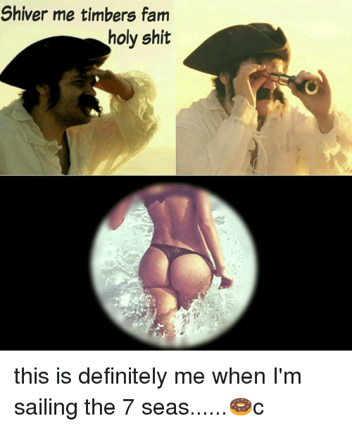 Definitely, Fam, and Memes: Shiver me timbers fam  holy shit this is definitely me when I'm sailing the 7 seas......🍩c