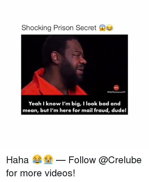 Bad, Dude, and Memes: Shocking Prison Secret  WeThelnternettV  Yeah I know I'm big, I look bad and  mean, but I'm here for mail fraud, dude! Haha 😂😭 — Follow @Crelube for more videos!
