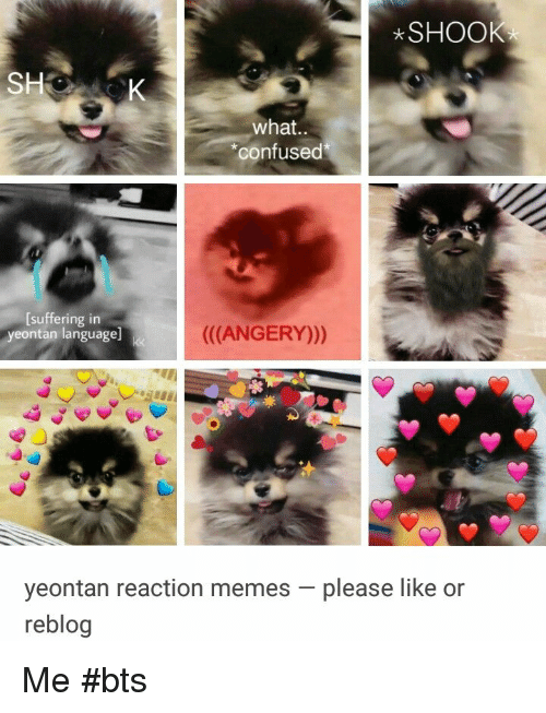 "Confused, Memes, and Bts: SHOOK  what..  ""confused  [suffering in  yeontan language  ((ANGERY)))  yeontan reaction memes-please like or  reblog Me #bts"