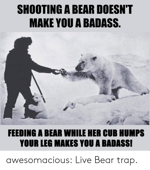 A Badass: SHOOTING A BEAR DOESN'T  MAKE YOU A BADASS.  FEEDING A BEAR WHILE HER CUB HUMPS  YOUR LEG MAKES YOU A BADASS! awesomacious:  Live Bear trap.