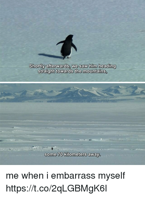 Saw, Relatable, and Him: Shortly afterwards, we saw him heading  straight towards the mountains   some 70 kilometers away. me when i embarrass myself https://t.co/2qLGBMgK6l
