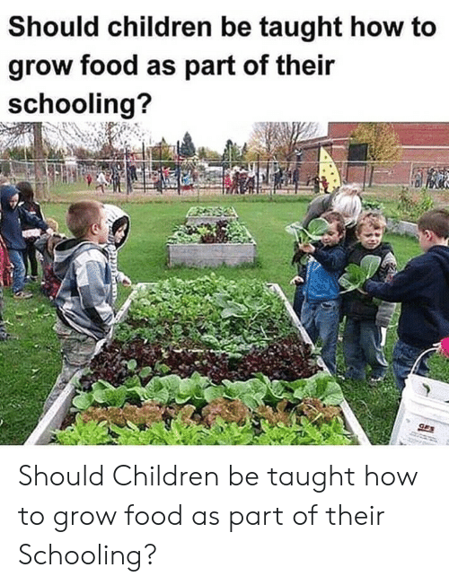 taught: Should children be taught how to  grow food as part of their  schooling?  GES Should Children be taught how to grow food as part of their Schooling?