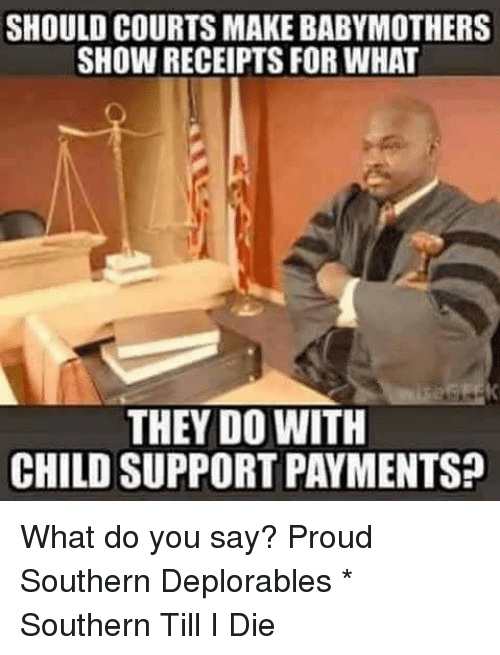 Deplorables: SHOULD COURTS MAKE BABYMOTHERS  SHOW RECEIPTS FOR WHAT  THEY DO WITH  CHILD SUPPORT PAYMENTS? What do you say? Proud Southern Deplorables * Southern Till I Die