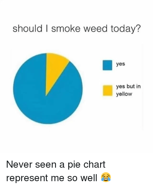 Weed, Marijuana, and Today: should I smoke weed today?  yes  yes but in  yellow Never seen a pie chart represent me so well 😂