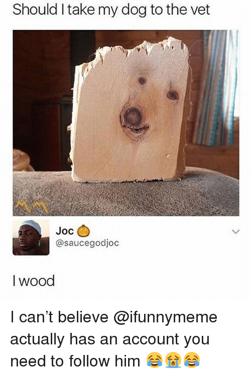 Dank Memes, Dog, and Him: Should I take my dog to the vet  Joc  @saucegodjoc  I wood I can't believe @ifunnymeme actually has an account you need to follow him 😂😭😂