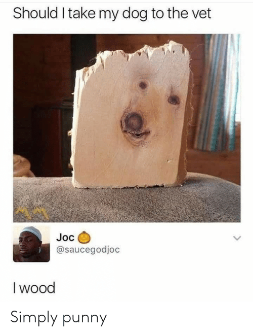 Punny: Should I take my dog to the vet  Joc  @saucegodjoc  I wood Simply punny