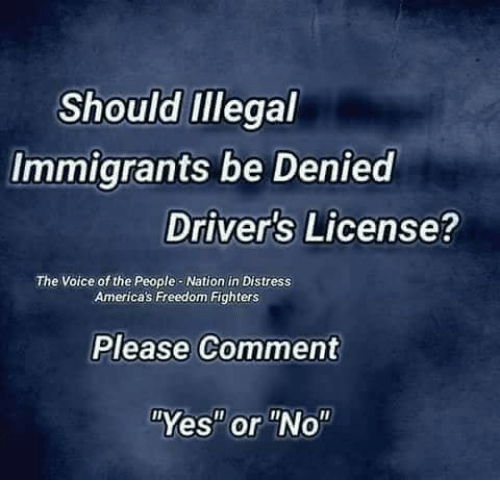 "freedom fighters: Should iIllegal  Immigrants be Denied  Driver's License?  The Voice of the People-Nation in Distress  Americas Freedom Fighters  Please Comment  ""Yes"" or ""No"""