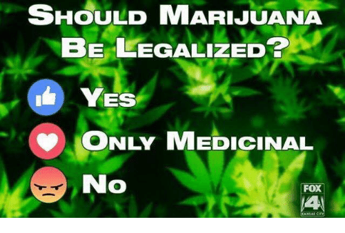 Memes, Marijuana, and 🤖: SHOULD MARIJUANA  BE LEGALIZED  YES  ONLY MEDICINAL  No  FOX
