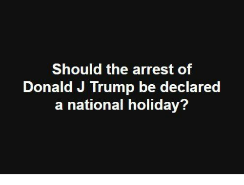Memes, Trump, and 🤖: Should the arrest of  Donald J Trump be declared  a national holiday?