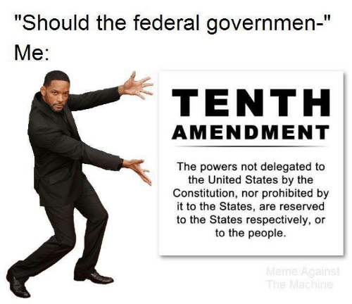 "respectively: ""Should the federal governmen-""  Ме:  TENTH  AMENDMENT  The powers not delegated to  the United States by the  Constitution, nor prohibited by  it to the States, are reserved  to the States respectively, or  to the people.  Meme Against  The Machine"