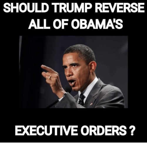 should trump reverse all of obama executive orders 9968736 should trump reverse all of obama executive orders meme on sizzle