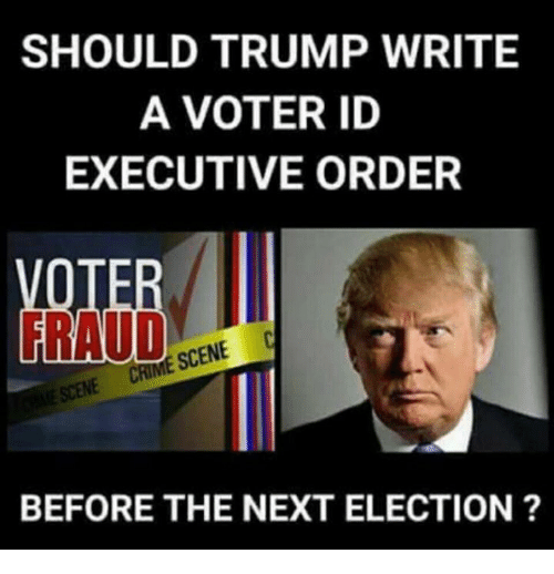 executive order: SHOULD TRUMP WRITE  A VOTER ID  EXECUTIVE ORDER  RAUD  SCENE C  BEFORE THE NEXT ELECTION ?