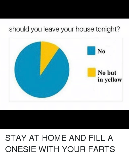 Memes, Home, and House: should you leave your house tonight?  No  No but  in yellow STAY AT HOME AND FILL A ONESIE WITH YOUR FARTS