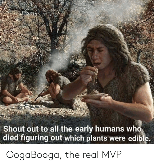 shout out: Shout out to all the early humans who  died figuring out which plants were edible. OogaBooga, the real MVP