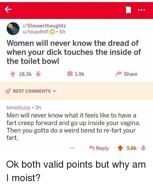 Moist: /Showerthoughts  u/bluedhift.6h  Women will never know the dread of  when your dick touches the inside of  the toilet bowl  18.3k  1.9k  Share  BEST COMMENTS  kimisfuzzy 3h  Men will never know what it feels like to have a  fart creep forward and go up inside your vagina.  Then you gotta do a weird bend to re-fart your  fart.  Reply 5.6k Ok both valid points but why am I moist?
