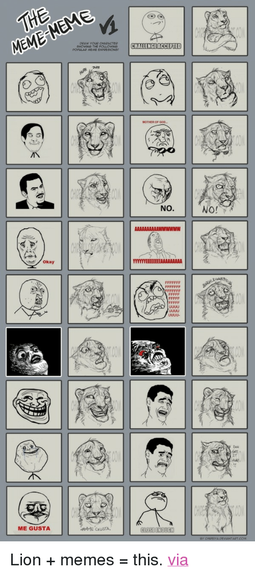 """meme faces: SHOWINS THE F  POPULAR MENE ExPRESIONSY  CHALLENGEACCEPTED  MOTHER OF GOO..  NO.  okay  27  Away  ME GUSTA  APT.COM <p>Lion + memes = this. <a href=""""http://www.blameitonthevoices.com/2012/02/lion-meme-faces.html"""" target=""""_blank"""">via</a></p>"""