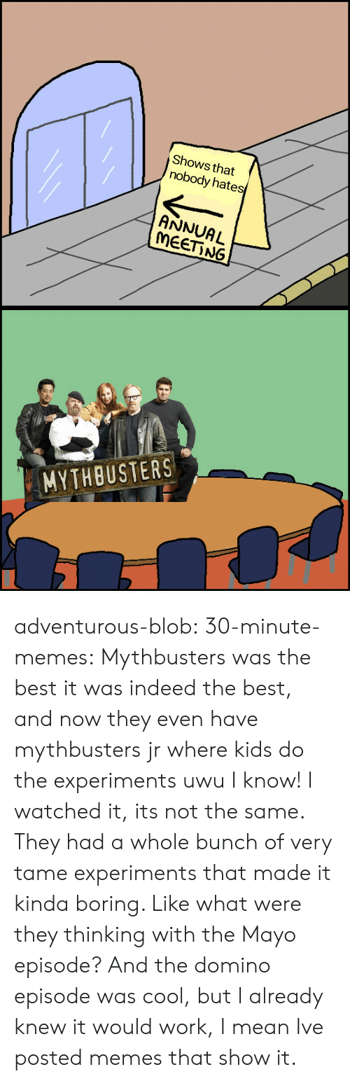 domino: Shows that  nobody hates  ANNUAL  MEET NG  MYTHBUSTERS adventurous-blob:  30-minute-memes:  Mythbusters was the best  it was indeed the best, and now they even have mythbusters jr where kids do the experiments uwu   I know! I watched it, its not the same. They had a whole bunch of very tame experiments that made it kinda boring. Like what were they thinking with the Mayo episode? And the domino episode was cool, but I already knew it would work, I mean Ive posted memes that show it.