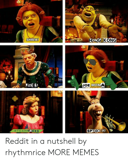Hong Kong: SHREK!  HONG KONG  JoE!  JOE MOMA  SPOOK Y!  Reddit in a nutshell by rhythmrice MORE MEMES