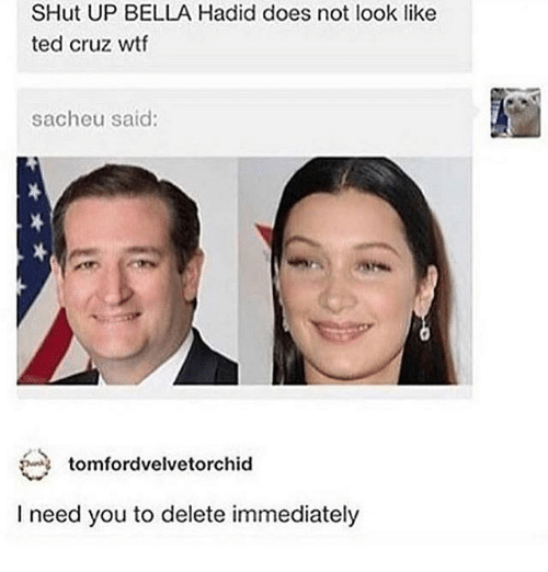 Ironic, Shut Up, and Ted: SHut UP BELLA Hadid does not look like  ted cruz wtf  sacheu said:  tomfordvelvetorchid  I need you to delete immediately