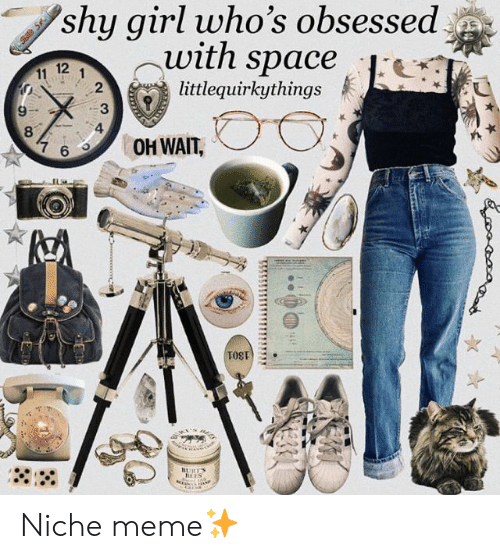 niche: shy girl who's obsessed  -With space  12  .  littlequirkythings  2  6OH WAIT, Niche meme✨