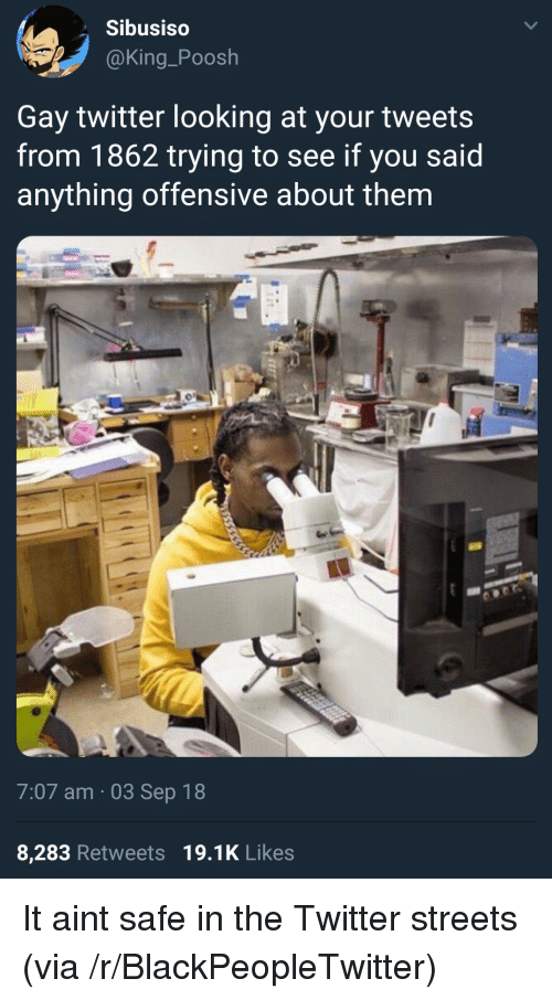 Blackpeopletwitter, Streets, and Twitter: Sibusiso  @King_Poosh  Gay twitter looking at your tweets  from 1862 trying to see if you said  anything offensive about thenm  7:07 am 03 Sep 18  8,283 Retweets 19.1K Likes It aint safe in the Twitter streets (via /r/BlackPeopleTwitter)