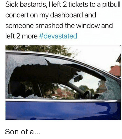 Funny, Pitbull, and Sick: Sick bastards, I left 2 tickets to a pitbull  concert on my dashboard and  someone smashed the window and  left 2 more