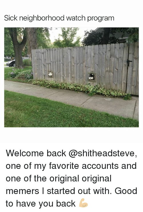 Funny, Program, and Programs: Sick neighborhood watch program Welcome back @shitheadsteve, one of my favorite accounts and one of the original original memers I started out with. Good to have you back 💪🏼
