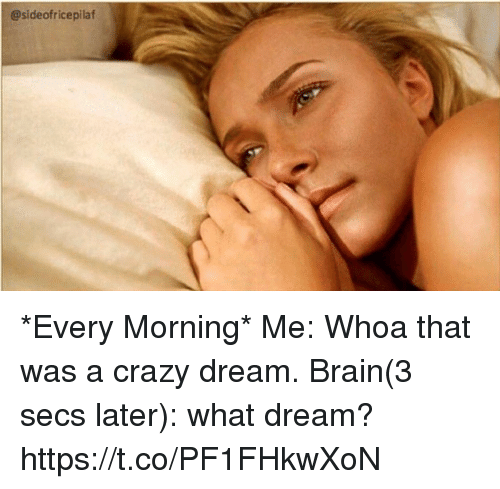 Crazy, Memes, and Brain: @sideofricepilaf *Every Morning* Me: Whoa that was a crazy dream.  Brain(3 secs later): what dream? https://t.co/PF1FHkwXoN