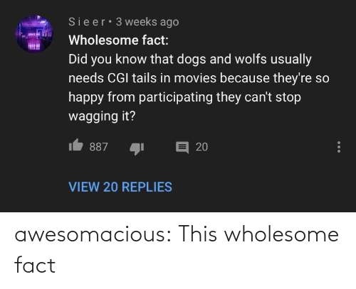 can't stop: Sieer 3 weeks ago  LOVE  Wholesome fact:  Did you know that dogs and wolfs usually  needs CGI tails in movies because they're so  happy from participating they can't stop  wagging it?  目 20  887  VIEW 20 REPLIES awesomacious:  This wholesome fact