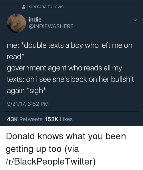 Blackpeopletwitter, Bullshit, and Government: sierraaa follows  indie  @INDIEWASHERE  me: *double texts a boy who left me on  read  government agent who reads all my  texts: oh i see she's back on her bullshit  again *sigh*  9/21/17, 3:52 PM  43K Retweets 153K Likes <p>Donald knows what you been getting up too (via /r/BlackPeopleTwitter)</p>