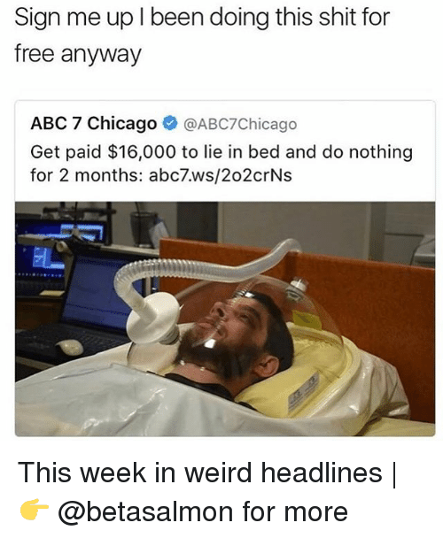 Abc, Chicago, and Memes: Sign me up l been doing this shit for  free anyway  ABC 7 Chicago  @ABC7 Chicago  Get paid $16,000 to lie in bed and do nothing  for 2 months: abc7.ws/202crNs This week in weird headlines | 👉 @betasalmon for more