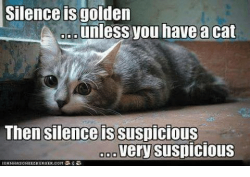 Suspicious: Silence golden  unless you have a cat  Then silence is Suspicious  very suspicious  000  NH