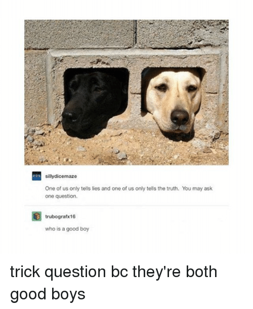 trick questions: silly dicemaze  One of us only tells lies and one of us only tells the truth. You may ask  one question.  trubografx16  who is a good boy trick question bc they're both good boys