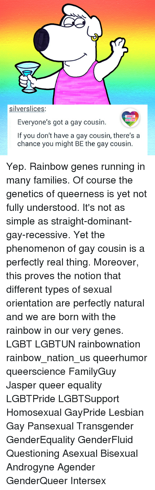 Lgbt, Memes, and Transgender: silverslices:  LGBT  Everyone's got a gay cousin.  UNITED  If you don't have a gay cousin, there's a  chance you might BE the gay cousin. Yep. Rainbow genes running in many families. Of course the genetics of queerness is yet not fully understood. It's not as simple as straight-dominant-gay-recessive. Yet the phenomenon of gay cousin is a perfectly real thing. Moreover, this proves the notion that different types of sexual orientation are perfectly natural and we are born with the rainbow in our very genes. LGBT LGBTUN rainbownation rainbow_nation_us queerhumor queerscience FamilyGuy Jasper queer equality LGBTPride LGBTSupport Homosexual GayPride Lesbian Gay Pansexual Transgender GenderEquality GenderFluid Questioning Asexual Bisexual Androgyne Agender GenderQueer Intersex