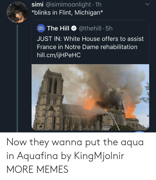Assist: simi @simimoonlight 1h  *blinks in Flint, Michigan*  WWE.The Hill @thehill 5h  JUST IN: White House offers to assist  France in Notre Dame rehabilitation  hill.cm/ijHPeHC  FIN ZON Now they wanna put the aqua in Aquafina by KingMjolnir MORE MEMES