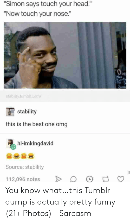 """Sarcasm: """"Simon says touch your head.""""  """"Now touch your nose.""""  Man  stability.tumblo.com  stability  this is the best one omg  hi-imkingdavid  Source: stability  112,096 notes You know what…this Tumblr dump is actually pretty funny (21+ Photos) – Sarcasm"""