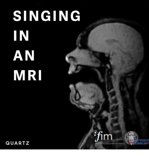 Singing, Dank Memes, and Mri: SINGING  IN  AN  MRI  QUARTZ  IVERSIT