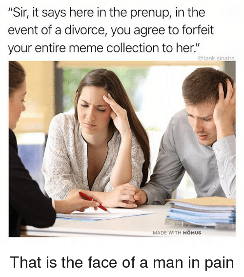 "Funny, Meme, and Divorce: ""Sir, it says here in the prenup, in the  event of a divorce, you agree to forfeit  your entire meme collection to her.""  @tank.sinatra  MADE WITH MOMUS That is the face of a man in pain"