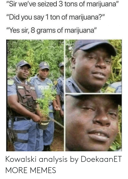 "grams: ""Sir we've seized 3 tons of marijuana""  Did  Did you say T ton of marijuana?  ""Yes sir, 8 grams of marijuana"" Kowalski analysis by DoekaanET MORE MEMES"