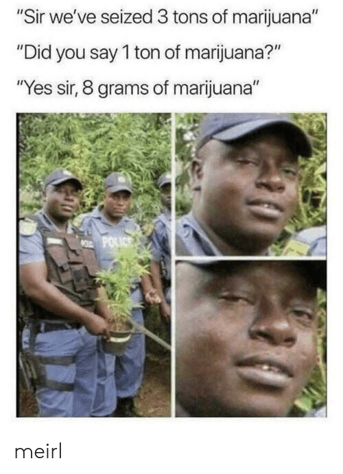 "grams: ""Sir we've seized 3 tons of marijuana""  ""Did you say 1 ton of marijuana?""  ""Yes sir, 8 grams of marijuana""  MOLD POLICS meirl"