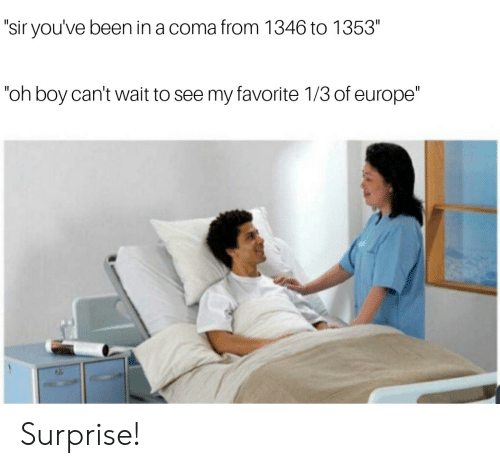 """sir-youve-been-in-a-coma: """"sir you've been in a coma from 1346 to 1353""""  """"oh boy can't wait to see my favorite 1/3 of europe"""" Surprise!"""