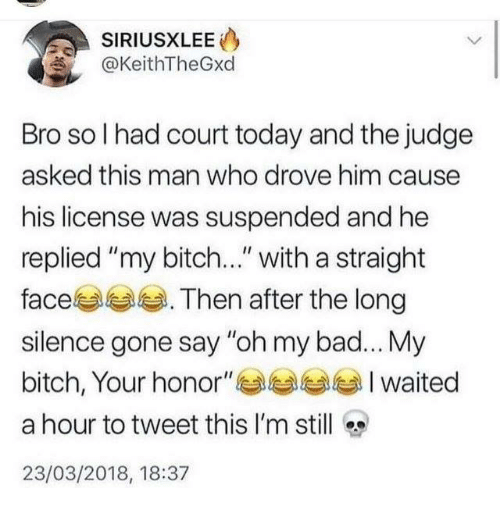 """My Bitch: SIRIUSXLEE  @KeithTheGxd  Bro so I had court today and the judge  asked this man who drove him cause  his license was suspended and he  replied """"my bitch..."""" with a straight  face . Then after the long  silence gone say """"oh my bad... My  bitch, Your honor""""Iwaited  a hour to tweet this I'm still  23/03/2018, 18:37"""