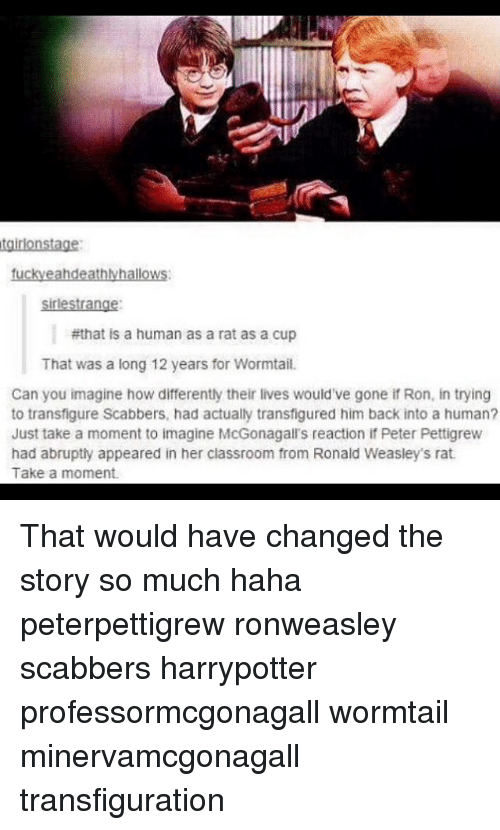 Hahae: sirlestrange  #that is a human as a rat as a cup  That was a long 12 years for Wormtail.  Can you imagine how differently their lives would've gone if Ron, in trying  to transfigure Scabbers, had actually transfigured him back into a human?  Just take a moment to imagine McGonagall's reaction if Peter Pettigrew  had abrupty appeared in her classroom from Ronald Weasley's rat  Take a moment. That would have changed the story so much haha peterpettigrew ronweasley scabbers harrypotter professormcgonagall wormtail minervamcgonagall transfiguration
