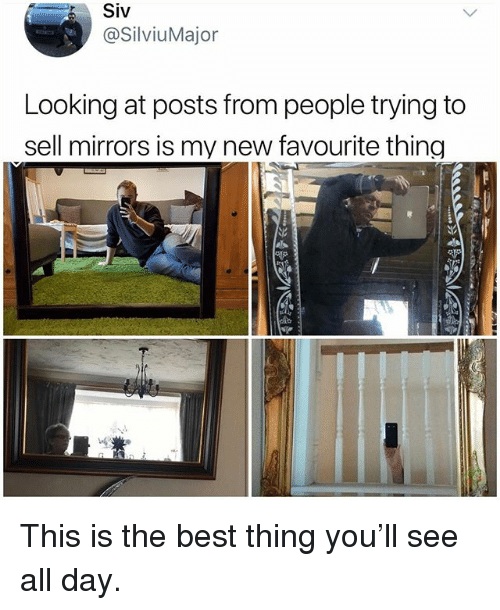 Memes, Best, and 🤖: Siv  @SilviuMajor  Looking at posts from people trying to  sell mirrors is my new favourite thing This is the best thing you'll see all day.