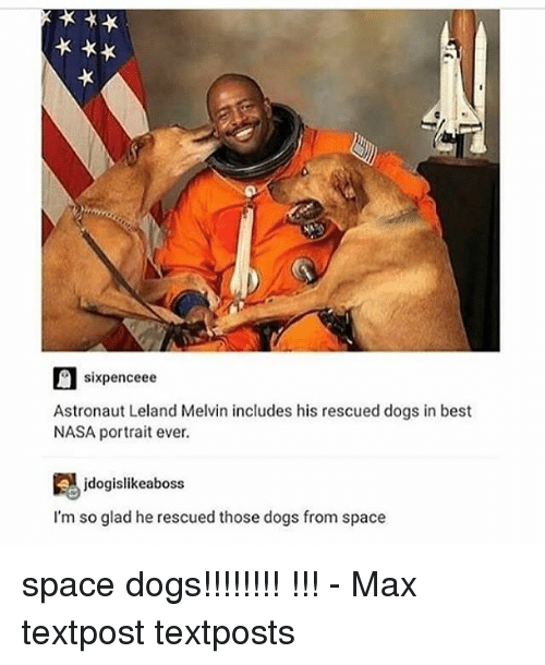 melvins: sixpenceee  Astronaut Leland Melvin includes his rescued dogs in best  NASA portrait ever.  jdogislikeaboss  I'm so glad he rescued those dogs from space space dogs!!!!!!!! !!! - Max textpost textposts